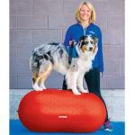 FitPAWS Plataforma de equilibrio para mascotas Trax Peanut rojo 50 cm