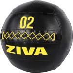 Wall Ball Ziva Performance - 2kg